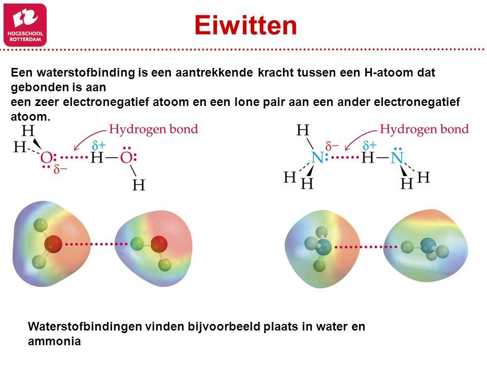 Eiwitten Een waterstofbinding is een aantrekkende kracht tussen een H-atoom dat gebonden is aan.