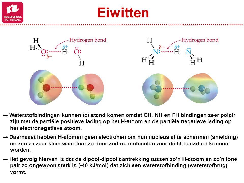 Eiwitten → Waterstofbindingen kunnen tot stand komen omdat OH, NH en FH bindingen zeer polair.