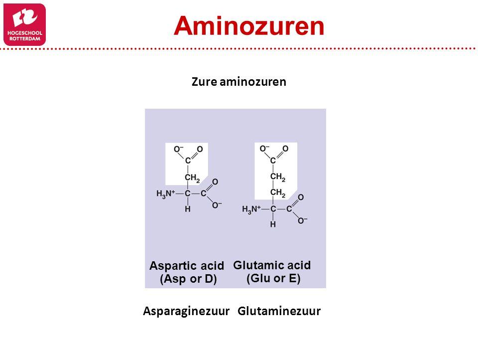 Aminozuren Zure aminozuren Asparaginezuur Glutaminezuur Aspartic acid