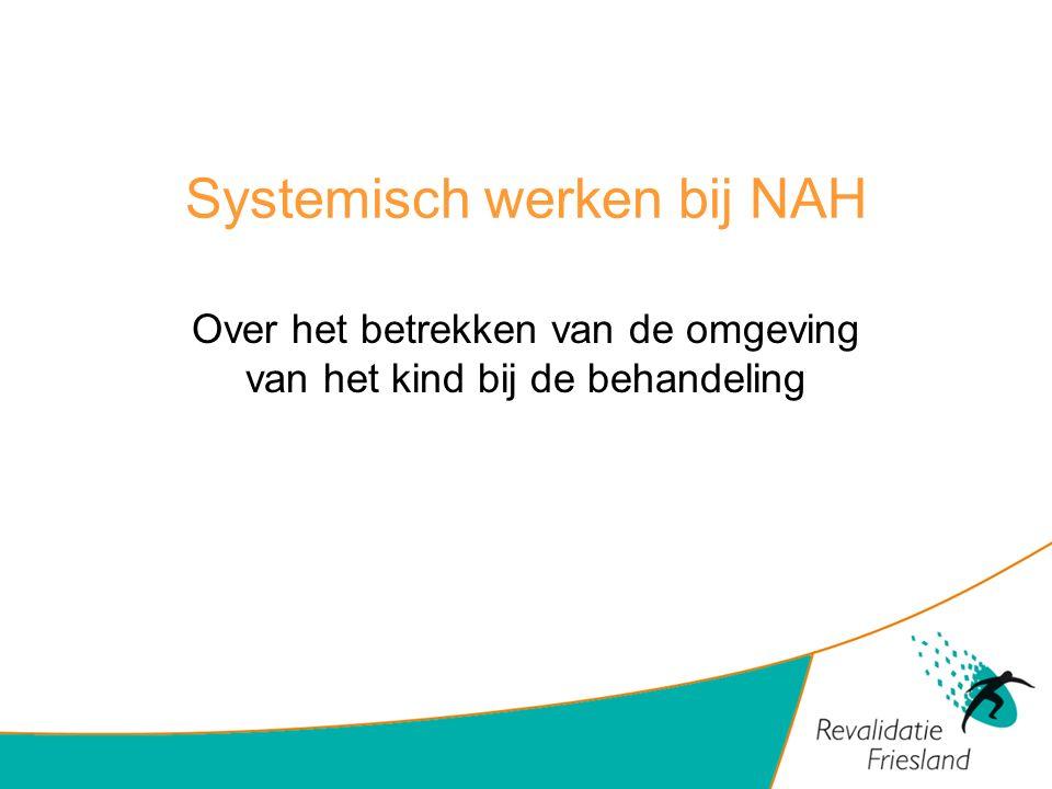 Systemisch werken bij NAH
