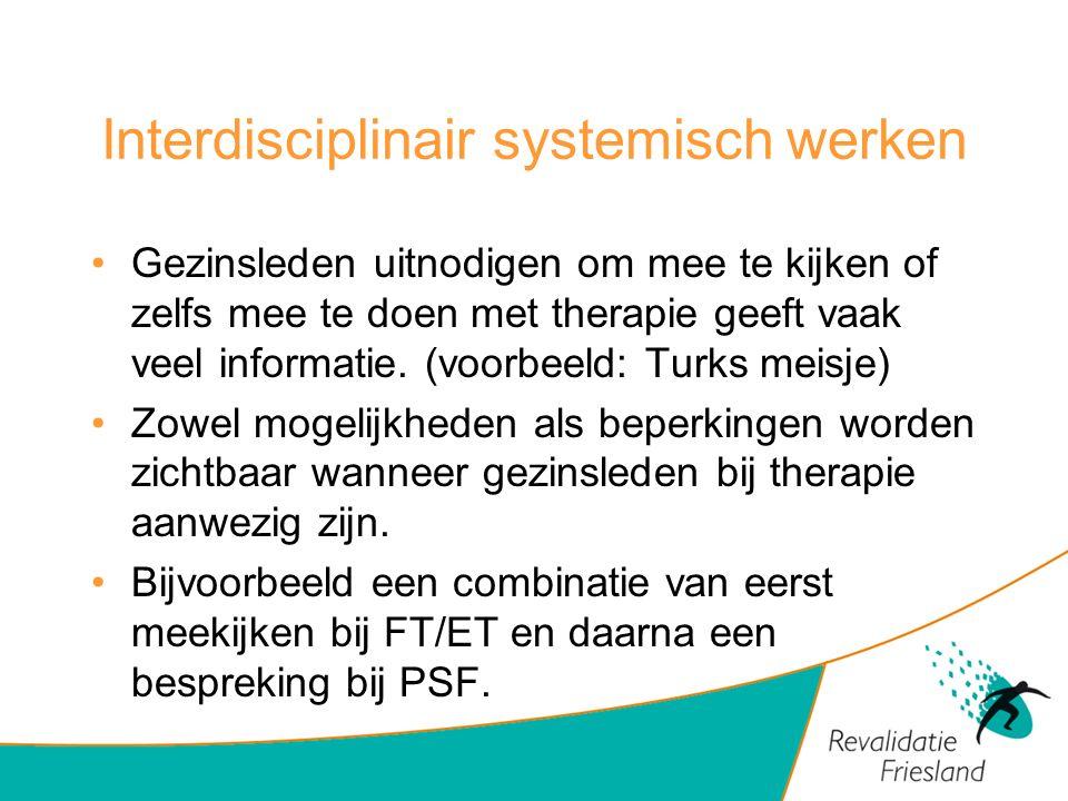Interdisciplinair systemisch werken