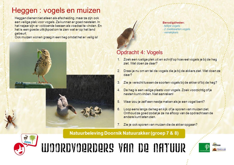 Natuurbeleving Doornik Natuurakker (groep 7 & 8)