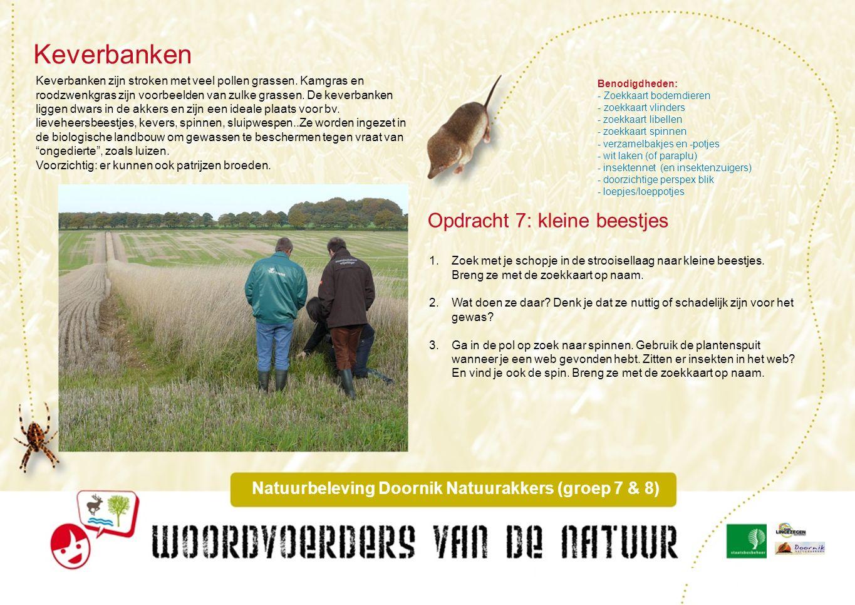 Natuurbeleving Doornik Natuurakkers (groep 7 & 8)