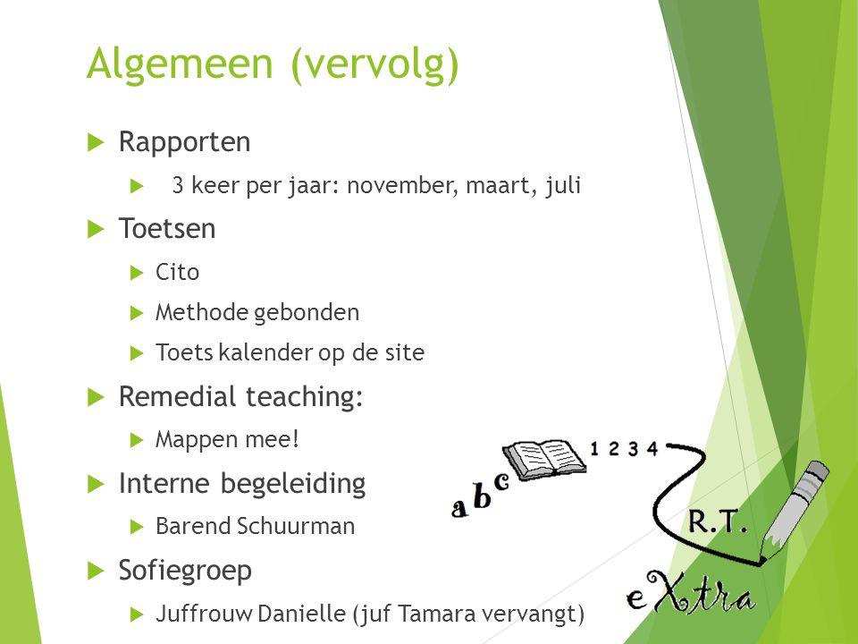 Algemeen (vervolg) Rapporten Toetsen Remedial teaching: