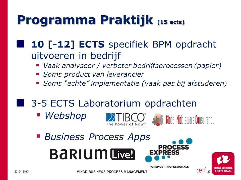 Programma Praktijk (15 ects)