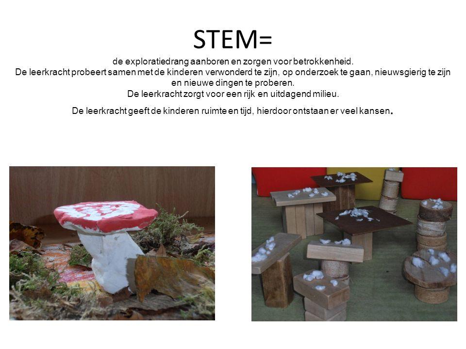 STEM= de exploratiedrang aanboren en zorgen voor betrokkenheid