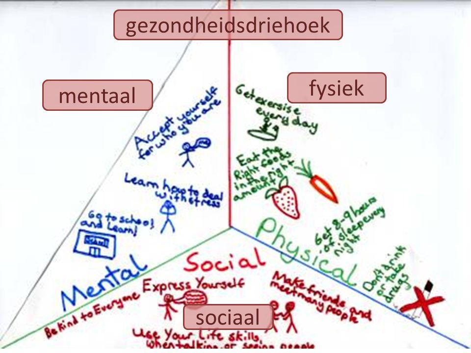 gezondheidsdriehoek fysiek mentaal sociaal