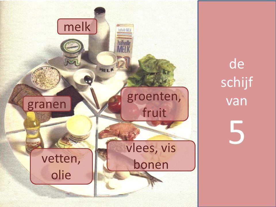 5 de schijf van melk groenten, fruit granen vlees, vis bonen