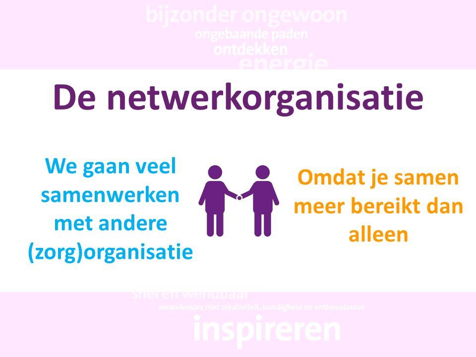 De netwerkorganisatie