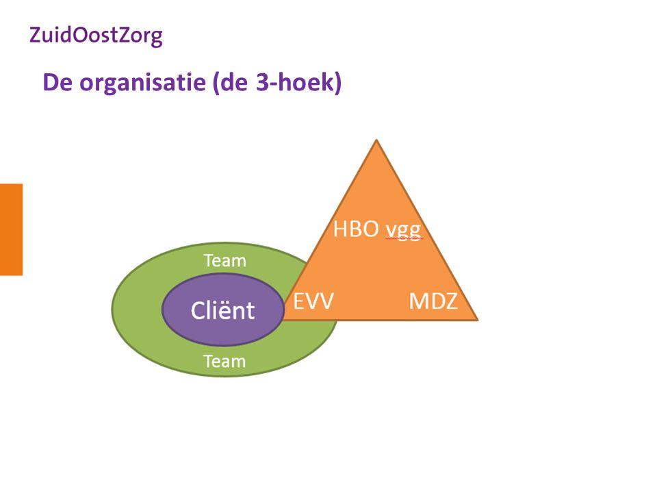 De organisatie (de 3-hoek)