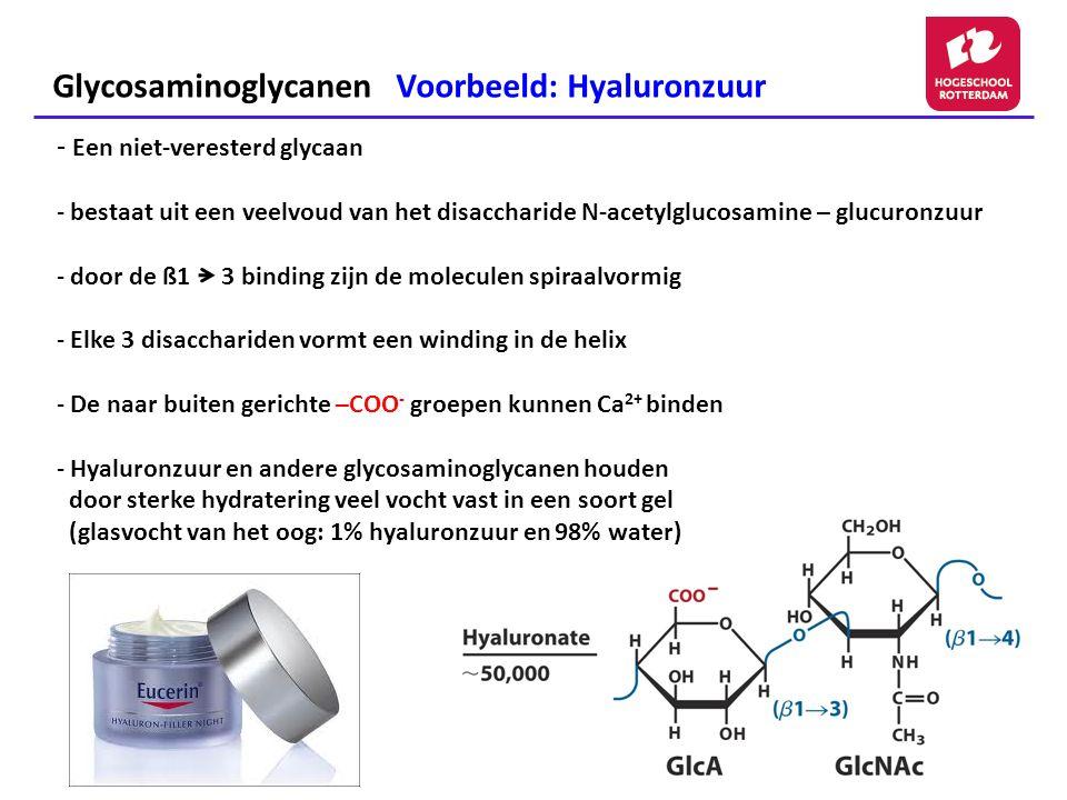Glycosaminoglycanen Voorbeeld: Hyaluronzuur