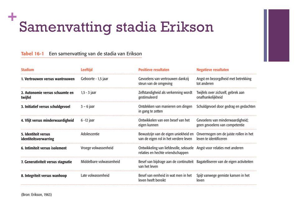 Samenvatting stadia Erikson