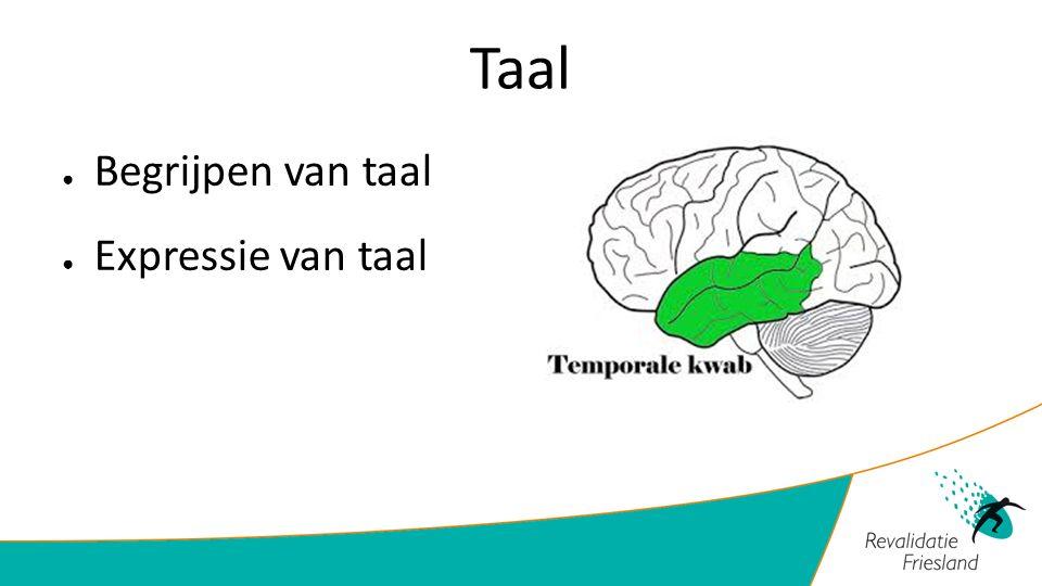Taal Begrijpen van taal Expressie van taal