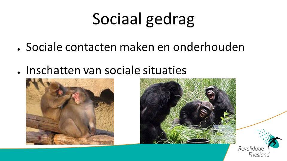 Sociaal gedrag Sociale contacten maken en onderhouden