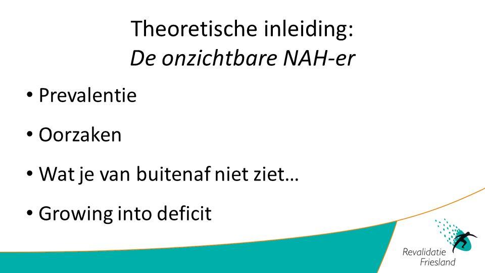 Theoretische inleiding: De onzichtbare NAH-er