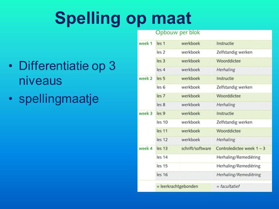 Spelling op maat Differentiatie op 3 niveaus spellingmaatje