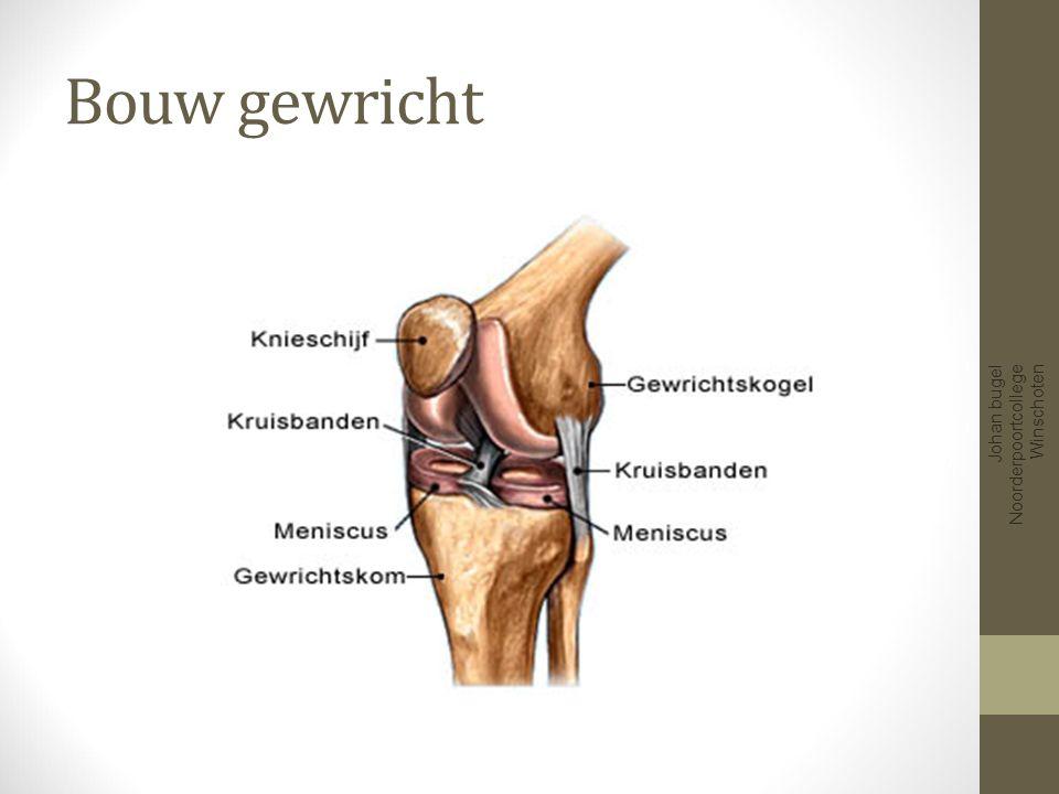 Bouw gewricht Johan bugel Noorderpoortcollege Winschoten