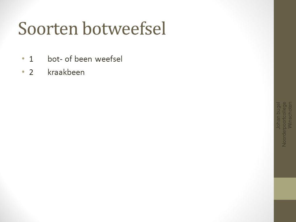 Soorten botweefsel 1 bot- of been weefsel 2 kraakbeen