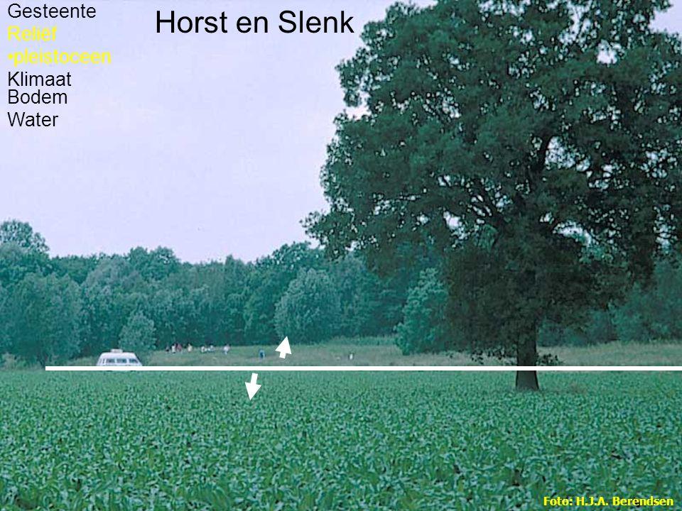 Horst en Slenk Gesteente Reliëf pleistoceen Klimaat Bodem Water