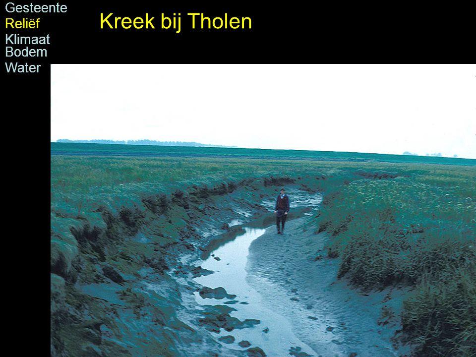 Kreek bij Tholen Gesteente Reliëf Klimaat Bodem Water