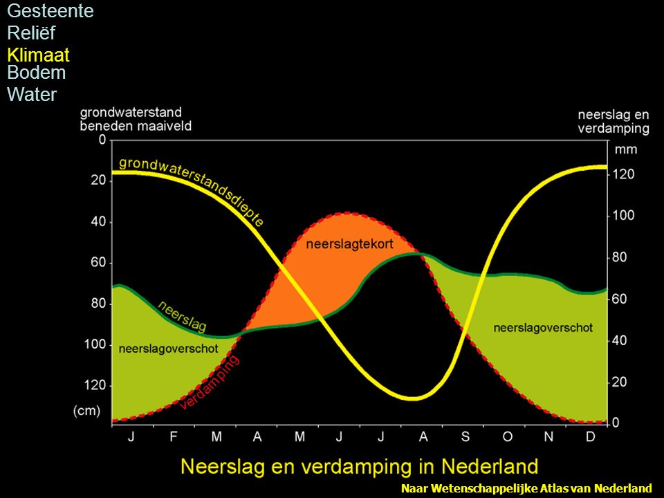 grondwaterstanden nederland