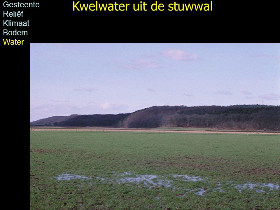 Kwelwater uit de stuwwal