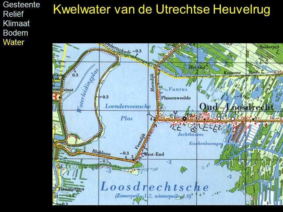 Kwelwater van de Utrechtse Heuvelrug