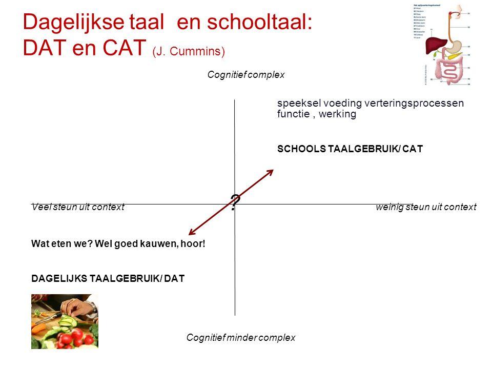 Dagelijkse taal en schooltaal: DAT en CAT (J. Cummins)
