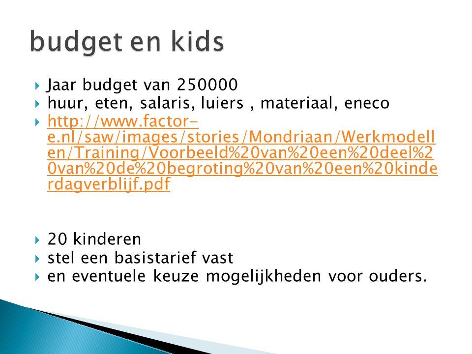 budget en kids Jaar budget van 250000