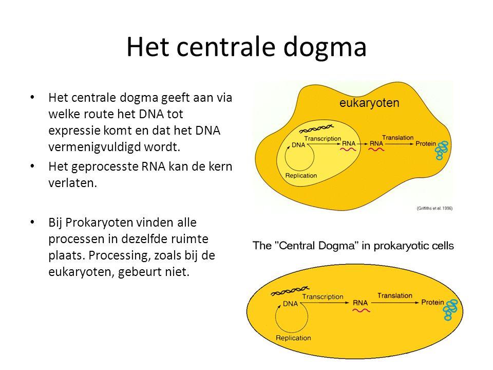 Het centrale dogma Het centrale dogma geeft aan via welke route het DNA tot expressie komt en dat het DNA vermenigvuldigd wordt.