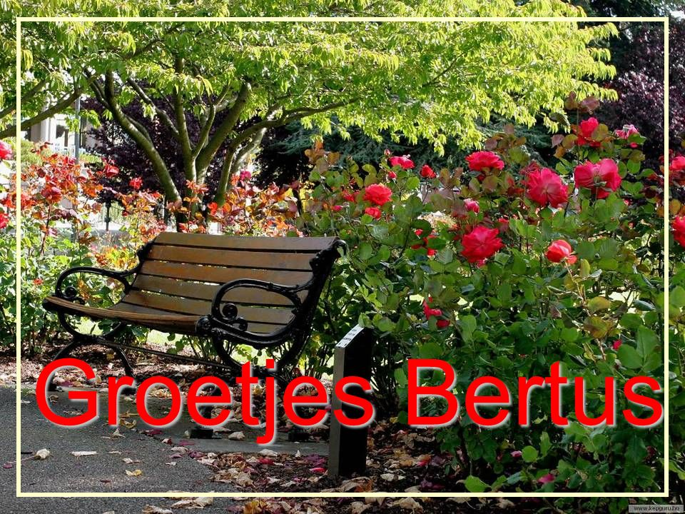 Groetjes Bertus Nijland