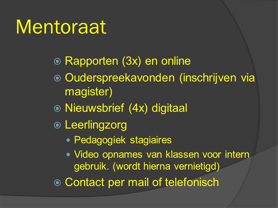 Mentoraat Rapporten (3x) en online