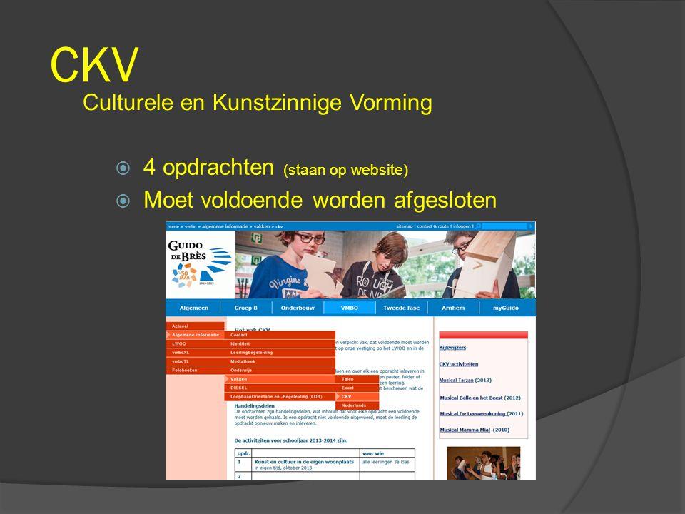 CKV Culturele en Kunstzinnige Vorming 4 opdrachten (staan op website)