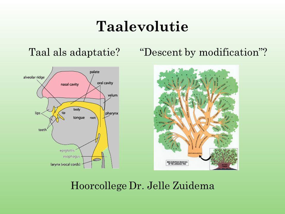 Hoorcollege Dr. Jelle Zuidema