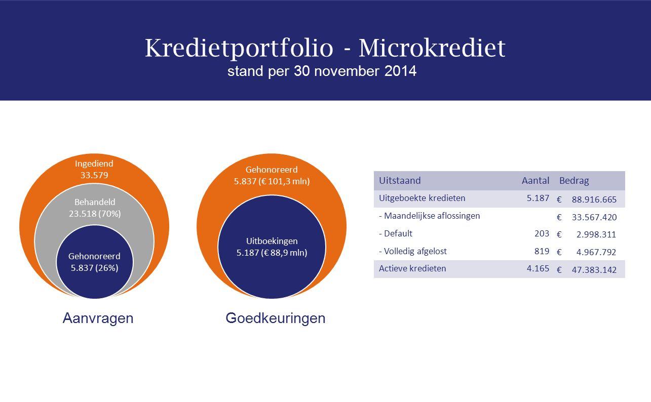 Kredietportfolio - Microkrediet