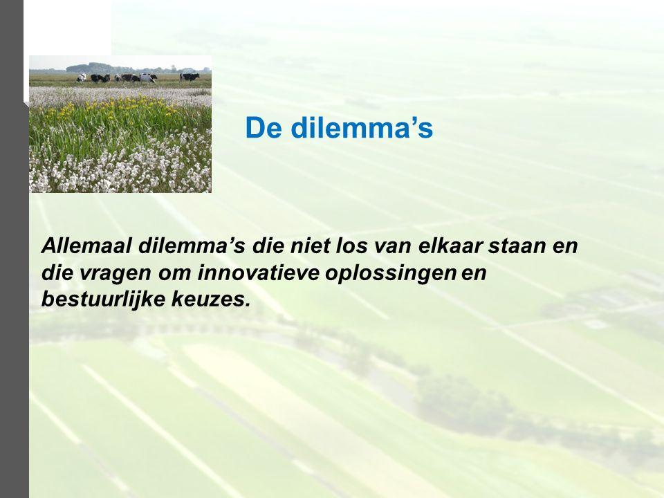 De dilemma's Allemaal dilemma's die niet los van elkaar staan en die vragen om innovatieve oplossingen en bestuurlijke keuzes.