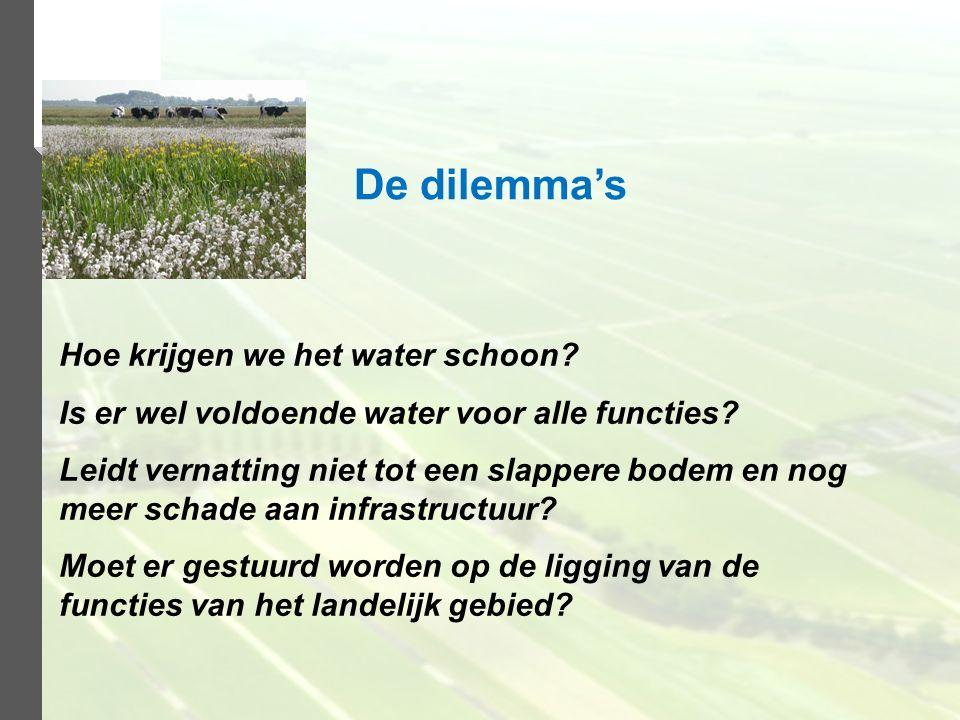 De dilemma's Hoe krijgen we het water schoon