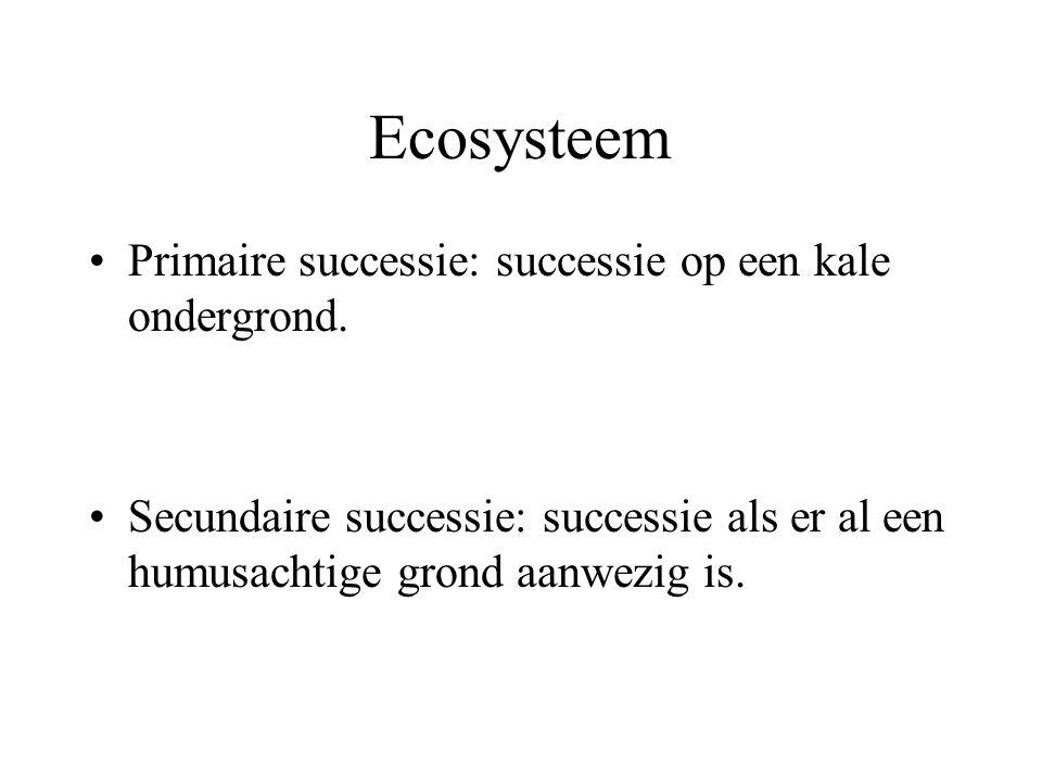Ecosysteem Primaire successie: successie op een kale ondergrond.
