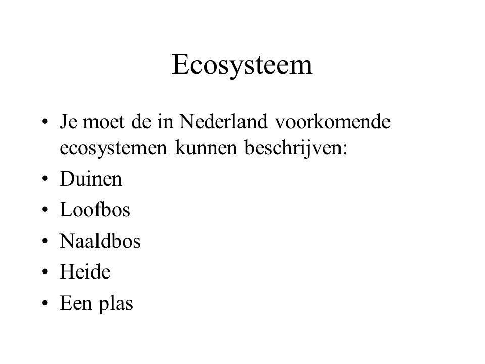 Ecosysteem Je moet de in Nederland voorkomende ecosystemen kunnen beschrijven: Duinen. Loofbos. Naaldbos.