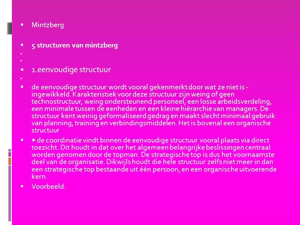 1.eenvoudige structuur Mintzberg 5 structuren van mintzberg