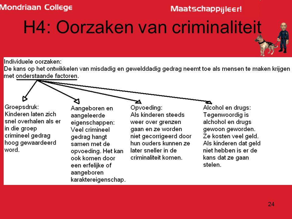 H4: Oorzaken van criminaliteit
