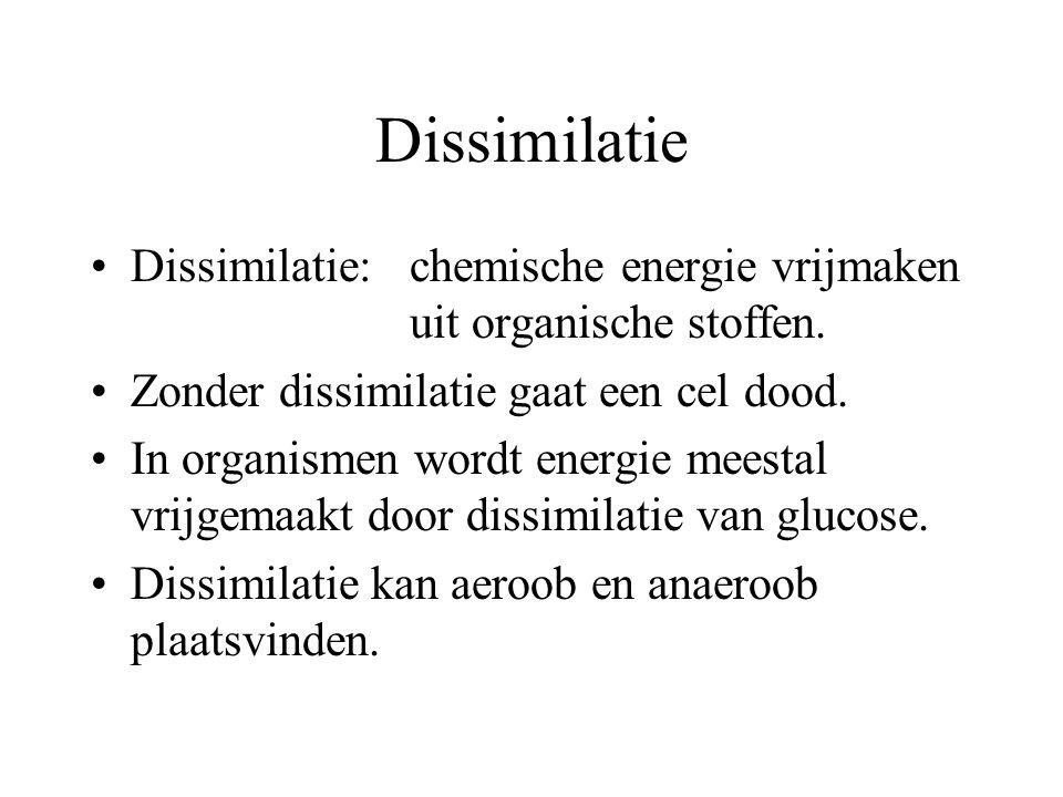 Dissimilatie Dissimilatie: chemische energie vrijmaken uit organische stoffen. Zonder dissimilatie gaat een cel dood.