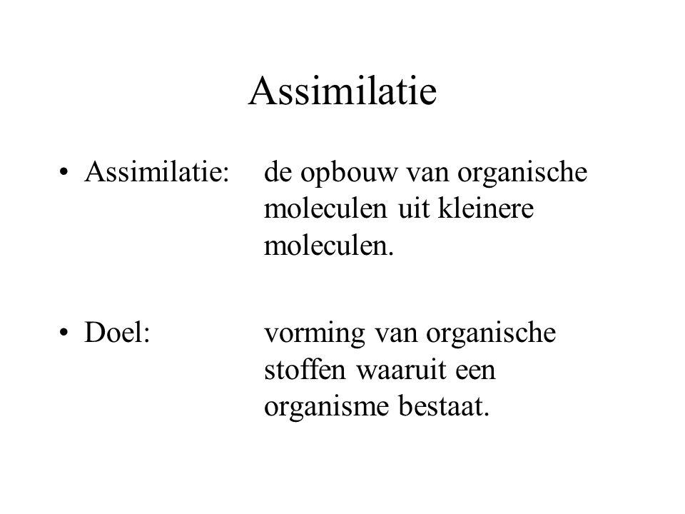 Assimilatie Assimilatie: de opbouw van organische moleculen uit kleinere moleculen.
