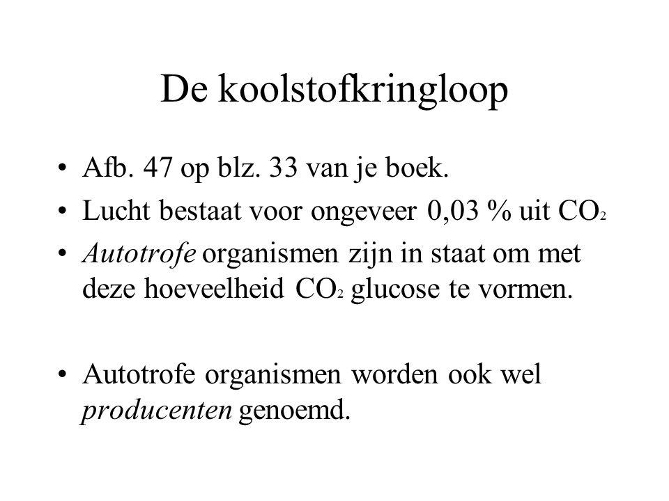 De koolstofkringloop Afb. 47 op blz. 33 van je boek.