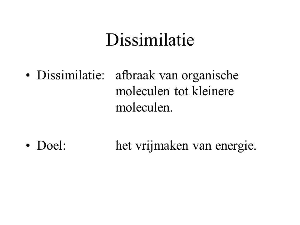 Dissimilatie Dissimilatie: afbraak van organische moleculen tot kleinere moleculen.