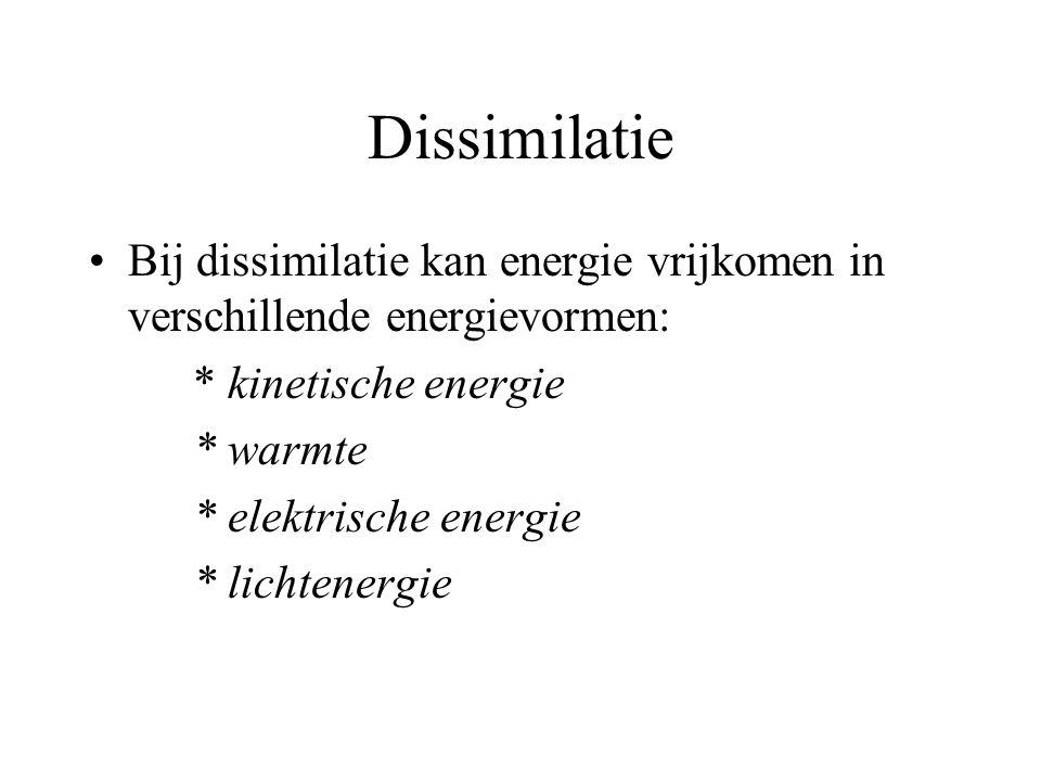 Dissimilatie Bij dissimilatie kan energie vrijkomen in verschillende energievormen: * kinetische energie.