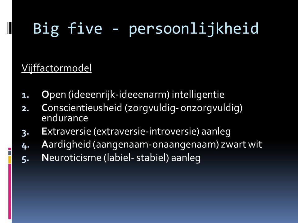 Big five - persoonlijkheid