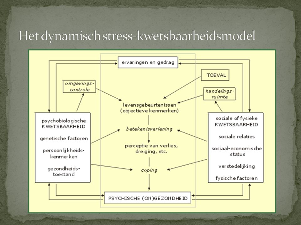 Het dynamisch stress-kwetsbaarheidsmodel