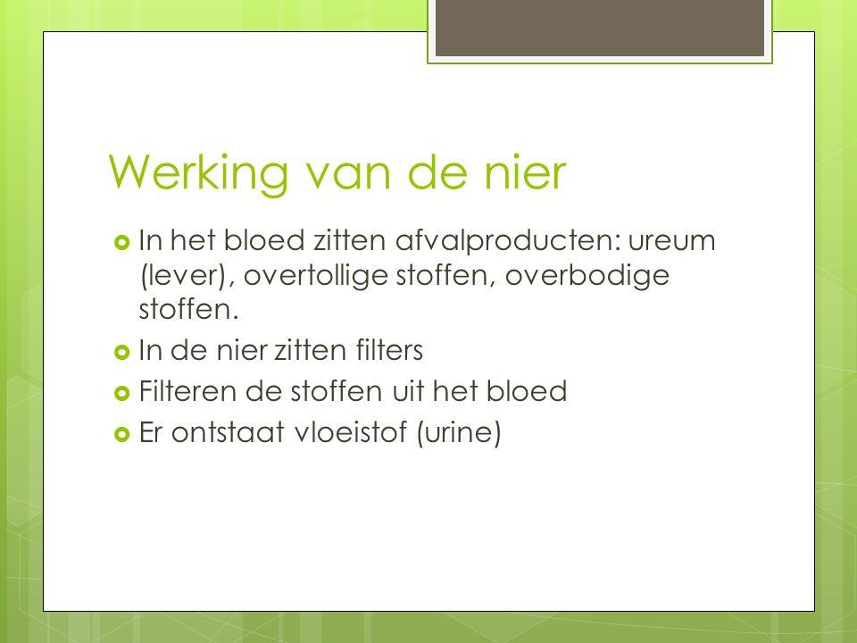 Werking van de nier In het bloed zitten afvalproducten: ureum (lever), overtollige stoffen, overbodige stoffen.