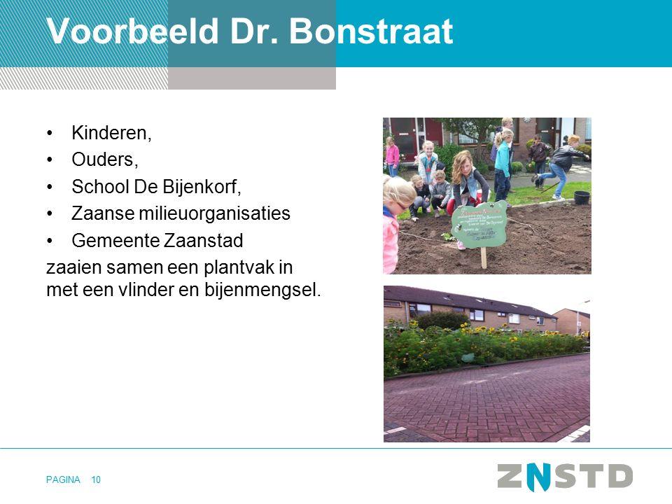 Voorbeeld Dr. Bonstraat